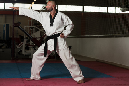 moves: Mature Men Practicing His Karate Moves
