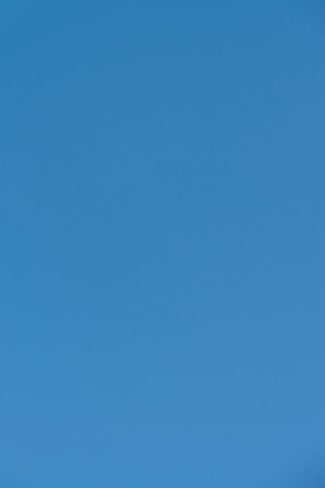 bluey: Blue Sky Without Clouds