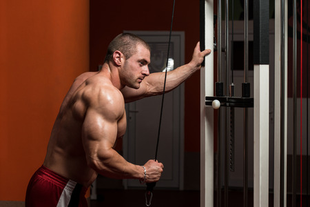 well build: Young Bodybuilder Doing Heavy Weight Exercise For Triceps