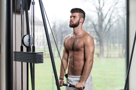 triceps: Young Handsome Man Exercise Triceps On Cable Machine