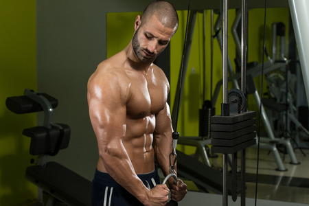 triceps: Young Bodybuilder Doing Heavy Weight Exercise For Triceps