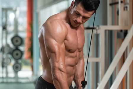 bodybuilder: Young Bodybuilder Doing Heavy Weight Exercise For Triceps