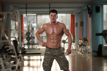 physically fit: Portrait Of A Physically Fit Young Man In Modern Fitness Center