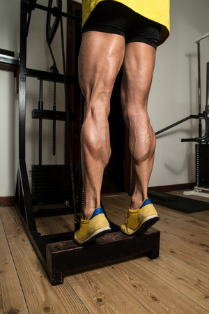 Bodybuilder Doing Heavy Weight Exercise For Legs Calves Stock Photo
