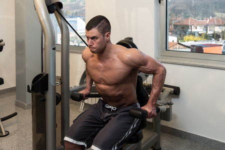 triceps: Young Physically Bodybuilder Working Out Triceps On Machine