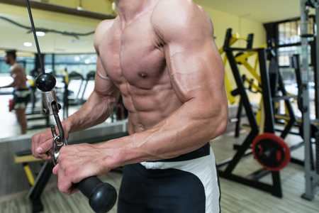 triceps: Young Bodybuilder Exercise Triceps In The Gym - He Is Performing Two Arm Triceps Push Downs Stock Photo