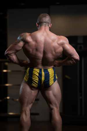 bodyart: Portrait Of A Physically Fit Man Showing His Well Trained Body In Gym