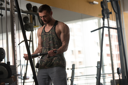 physique: Man In The Gym Exercising On His Biceps On Machine With Cable In The Gym