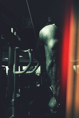 Muscular Fitness Bodybuilder Doing Heavy Weight Exercise For Triceps On Machine With Cable In The Gym Imagens - 121341813