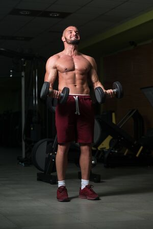 Athlete Working Out Biceps In A Gym - Dumbbell Concentration Curls Stock Photo - 135462297