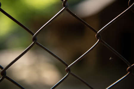 Close Up of the Wire Fence Blurred Background