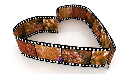 Roll film: coraz�n de pel�culas 3D sobre fondo blanco llenado de fotos de la naturaleza