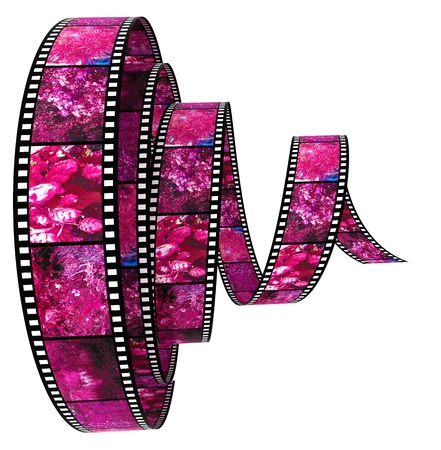3d film Segment rolled forward filled by pictures of nature photo