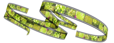 Segment color film rolled up filled by pictures of nature photo