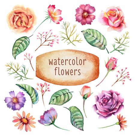 Fleures: Ensemble de feuilles et de fleurs à l'aquarelle dessinées à la main. Fleurs romantiques pour des affiches, pancartes, invitation, mariage, salutation et enregistrer les cartes de date. Illustration