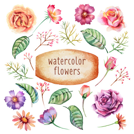retro flower: Set of hand drawn watercolor leaves and flowers. Romantic flowers for  posters, placards, invitation, wedding, greeting and save the date cards.