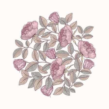 rose garden: Hand drawn rose garden decorative ornament. Pattern for fabric, textile, wrapping paper, card, invitation, wallpaper, web design Illustration