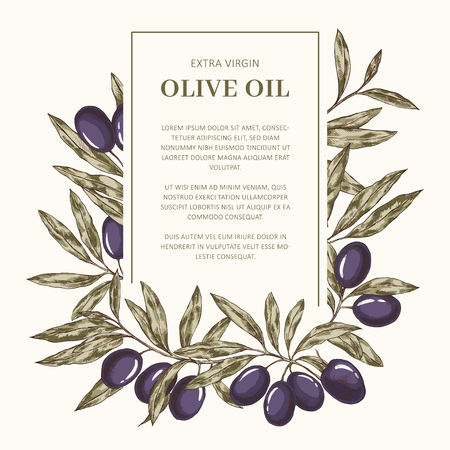 Hand drawn olive oil label vector template with place for text 免版税图像 - 122039368