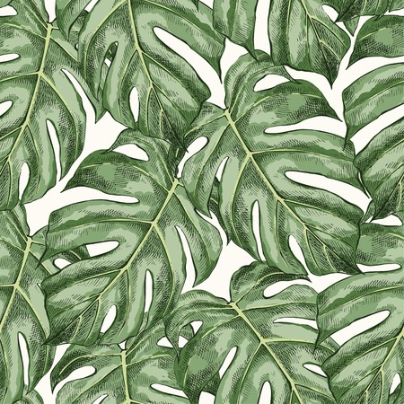 Monstera leaves hand drawn seamless color pattern. Philodendron watercolor background. Houseplant sketch drawing. Ink pen illustration. Domestic plant, greenery. Wrapping paper, wallpaper design