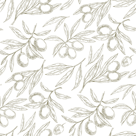Seamless hand drawn pattern with olive tree branches. Sketch Eco botanical background