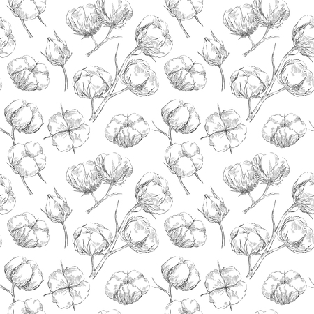 Hand drawn seamless pattern with cotton branches in retro sketch style. Botanical eco illustration. Ilustracja