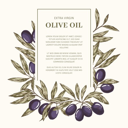 Hand drawn olive oil label vector template with place for text Banco de Imagens - 122039446