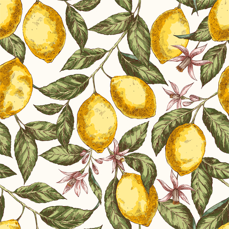 Lemons hand drawn vector seamless pattern. Citrus fruits engraving style color backdrop. Ink brush, pen drawing. Realistic leaves, flowers background. Botanical wrapping paper, wallpaper design