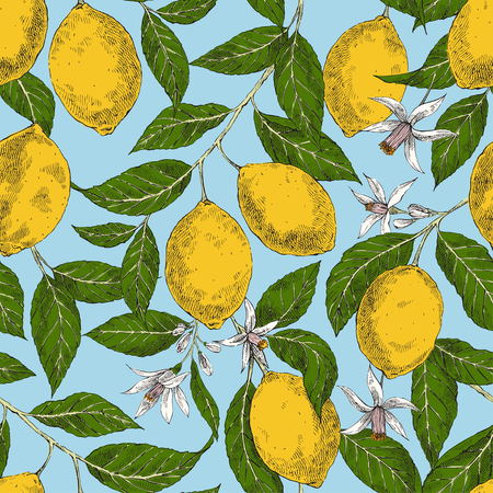 Lemons hand drawn vector seamless pattern. Retro citrus fruits engraving style color backdrop. Ink brush, pen drawing. Leaves, flowers background. Botanical wrapping paper, wallpaper design Ilustracja