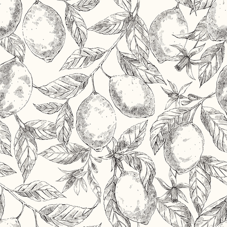 Lemons hand drawn vector seamless pattern. Citrus fruits engraving style crosshatch backdrop. Ink brush, pen drawing. Realistic leaves, flowers background. Botanical wrapping paper, wallpaper design
