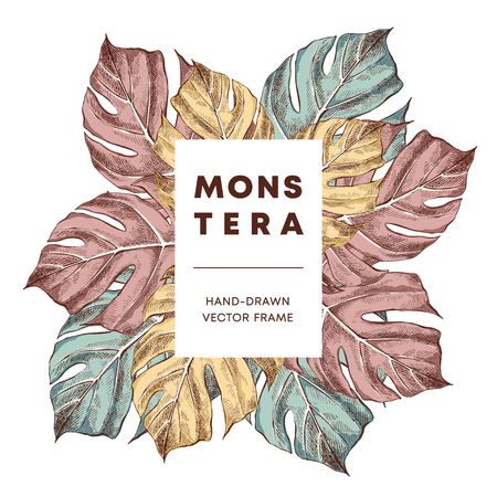 Monstera design hand drawn frame vector template. Swiss cheese plant leaves with copyspace. Sketch houseplant border for text. Sketch outline drawing. Plant exhibition poster, banner design layout
