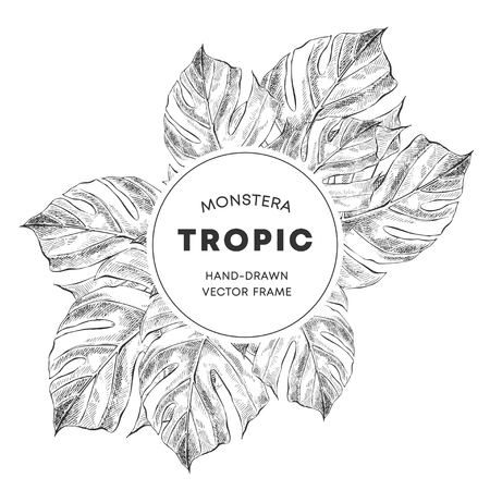 Monstera design hand drawn sketch poster template. Swiss cheese plant leaves with copyspace. Sketch philodendron border, frame for text. Houseplant sketch drawing. Plant exhibition banner design layout Ilustracja