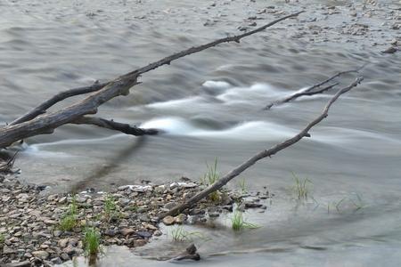 close up: river close up