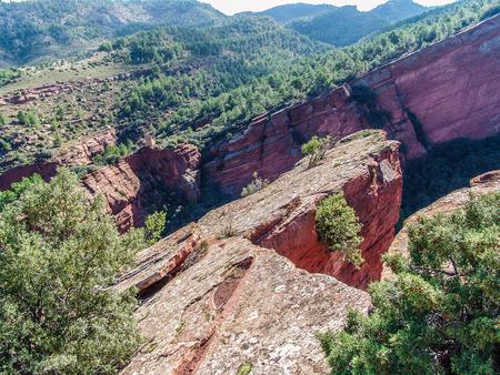 Old Red Sandstone, sedimentary rock