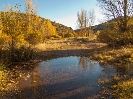 rill: Evening light enhances the gold of autumn. Stock Photo
