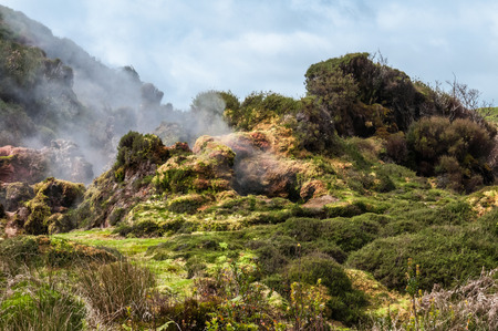 fissures: The Furnas do Enxofre on the island of Terceira, Azores.