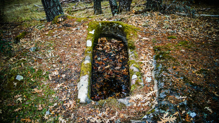 tumbas: Altas tumbas antropom�rficas medievales en Soria, Espa�a