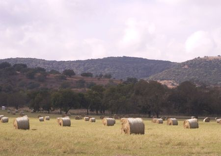 Hill Country View-Texas