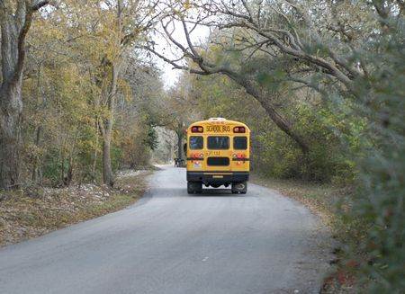 school buses: School bus on country road taking children home after school.