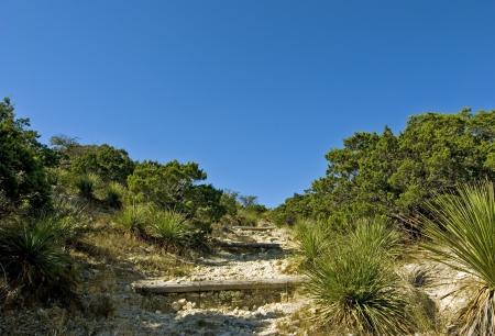 힐 카운티 상태 자연 지역, Bandera 텍사스의 광각보기.