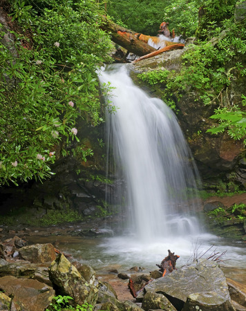 great smoky mountains national park: Grotto Falls in the Roaring Fork Area of the Great Smoky Mountains National Park, Tennessee. Stock Photo
