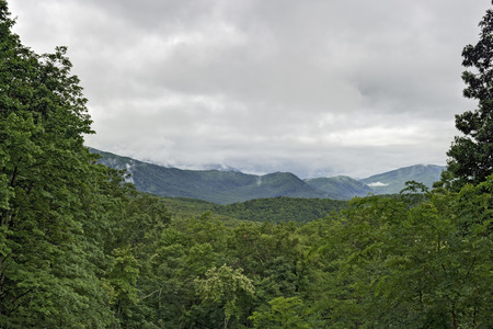great smoky mountains national park: Cloud-capped Mountains in Roaring Fork Area, Great Smoky Mountains National Park, Tennessee. Stock Photo