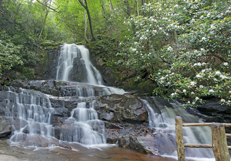 great smoky national park: Laurel Falls in the Cades Cove Area of the Great Smoky Mountains National Park, Tennessee. Stock Photo