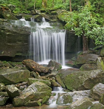 great smoky mountains national park: Waterfall on Rainbow Falls Trail in the Roaring Fork Area of the Great Smoky Mountains National Park, Tennessee. Stock Photo