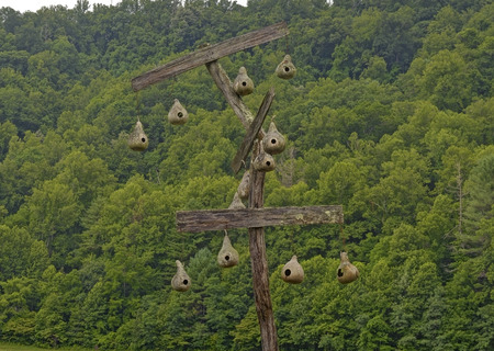 great: Gourd Birdhouses located at Mountain Farm Museum in the Great Smoky Mountains National Park, North Carolina. Public property, no property release required.