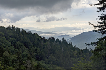 newfound gap: View of the Great Smoky Mountains on a Cloudy Day from Newfound Gap Overlook.