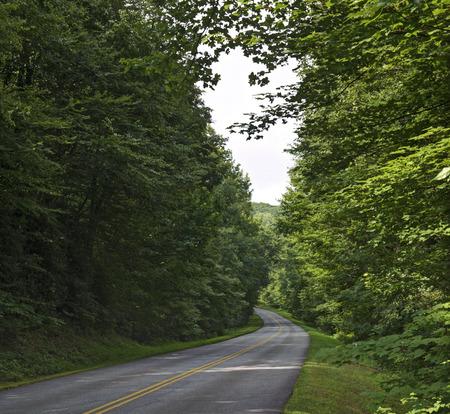 north ridge: A curve in the Blue Ridge Parkway roadway, North Carolina. Stock Photo