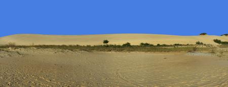 jockey's: Jockeys Ridge State Park Sand Dune Panorama in the Outer Banks, North Carolina. Stock Photo