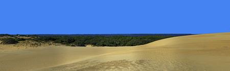 nags: Jockeys Ridge State Park Sand Dunes and Roanoke Sound Panorama in the Outer Banks, North Carolina. Foto de archivo