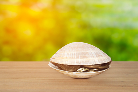 A sea shell with coins inside on wooden table nature background