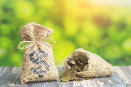 money bag with dollar sign and bag with coins on green background. Concept of loan or business finance